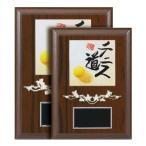レリーフ選択楯 XF-6510-A