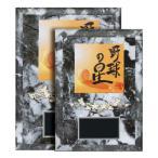 レリーフ選択楯 XF-6511-B