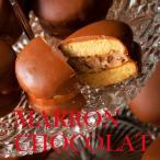 敬老の日 ギフト 八幡平の樹氷チョコマロン10個入 ギフト スイーツ 焼き菓子 栗 マシュマロクッキーサンド