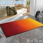 ショッピング玄関マット 玄関マット おしゃれ 洗える ラグ マット ドアマット 50 × 75 cm
