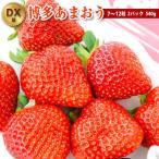 あまおう 苺 いちご 2パック DX等級 福岡県産
