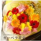 誕生日 プレゼント ガーベラ かすみ草 切り花 花束 ブーケ 結婚祝い