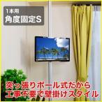 壁掛け風 壁寄せテレビスタンド 12-26V型対応 エアーポール 1本タイプ 角度固定S シルバー ap-110 エモーションズ