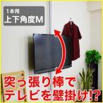壁掛け風 壁寄せテレビスタンド 22-32V型対応 エアーポール 1本タイプ 上下角度M シルバー ap-113 エモーションズ