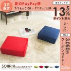 SORRIR Cushion 長方形タイプ