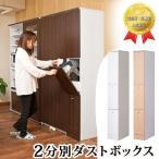 キッチン収納 スリム ダストボックス 2分別 キッチン収納 ゴミ箱