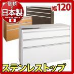 日本製 キッチンカウンター 完成品 ステンレス キッチンカウンター アイランド型 幅120