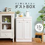 ダストボックス 分別 おしゃれ キッチン ごみ箱 分別 ゴミ箱 2分別ダストボックス 15L×2個