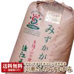 【29年産新米】【送料無料】滋賀県産石居さんのみずかがみ玄米30kg【THE GRAND認定米】【特別栽培米】