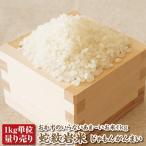 【令和元年産】【量り売り】蛇紋岩米1kg 【コシヒカリ】【こしひかり】【兵庫県たじま養父産】