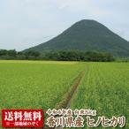 【令和元年産】香川県産ヒノヒカリ白米5kg 【ひのひかり】