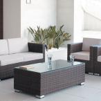 センターテーブルガーデンソファー用リビングテーブル業務用籐ラタン風rhodes-table
