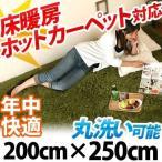 シャギーラグ - ラグマット おしゃれ 洗える シャギーラグ カーペット ラグ マット 床暖房 ホットカーペット対応 6畳 六畳用 長方形 200×250cm