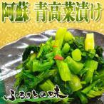 熊本県産  送料無料 スイートスプリング 5kg サイズ混合 約20玉前後