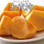 熊本県産 完全甘柿  太秋柿  2kg 5〜6玉入 2箱以上送料無料