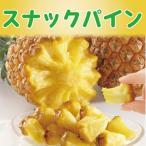 芯まで食べれる スナックパイン 【送料無料】