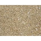 -漂白済み-天然星の砂 約1〜3mm/約100g 星砂 デコ レジン 沖縄 砂浜 星 太陽