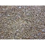 天然星の砂(無漂白) 約1〜3mm/約500g 星の砂・星砂・デコ・レジン