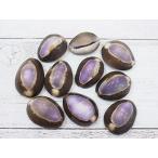 ハナマルパープルトップ 約2〜3cm/10個 貝殻 貝 シェル タカラガイ
