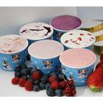 ショッピングアイスクリーム ベリーベリーアイスクリームギフト 6個入り