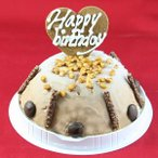 お誕生日ハッピーバースデー チョコレートアイスケーキ バースデイ 宅配 お誕生会 ホームパーティー プレゼント アイスクリーム 魁ジェラート