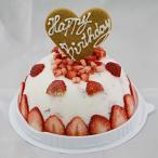 お誕生日ハッピーバースデー いちごヨーグルトアイスケーキ バースデイ お誕生会 ホームパーティー プレゼント カード付き アイスクリーム 魁ジェラート