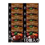 レトルト 煮込み ハンバーグ デミグラスソース 10個 神戸開花亭 自宅用 セット 食品 おかず のし・包装不可