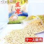 国産米 100% 使用 玄米 パフ 徳用 シリアル 1ケース 約3.9kg (260g×15袋)