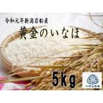【産地直送】《令和元年産》 新潟県産 岩船産 特別栽培米コシヒカリ 黄金のいなほ 5kg