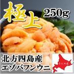 【極上】無添加 塩水生うに250g(エゾバフンウニ)(北方四島産)(北海道うに丼)