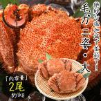 毛蟹 毛がに 毛ガニ 500g前後×2尾 北海道産