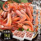 甘エビ 甘えび 子持ち 中サイズ 1kg(500g×2箱)約80尾入り 刺身用 越前産