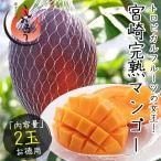 マンゴー 宮崎 完熟マンゴー 2L×2玉 宮崎県産 JA宮崎中央 (着日指定不可)