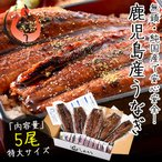 うなぎ 蒲焼き 国産 無頭 鹿児島県産 特大サイズ 約200g×5尾 ウナギ 鰻