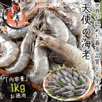 Shrimp - 天使の海老 1kg(約20〜30尾入り)えび エビ