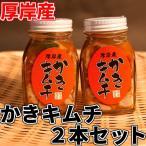 厚岸産 牡蠣 使用 かきキムチ 100g  x 2本セット 北海道産 絶品の味 珍味 濃厚 海のミルククール便 送料別