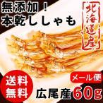 本乾ししゃも 60g 北海道産 柳葉魚 送料無料 広尾産 干ししゃも 岡嶋水産  珍味 つまみ 酒の肴 海鮮 お取り寄せ お得 メール便