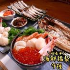 海鮮 詰め合わせ 福袋 9種 11点 中身が見える セット お中元 食品 2020 おうちグルメ 送料無料 ギフト 北海道 海産物 お取り寄せ クール便