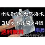 「3リットル袋×4袋セット」沖縄石垣島の天然海水(送料無料)【美ら海熱帯魚】