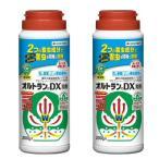 オルトランDX粒剤 200g×2本 住友化学園芸 [殺虫剤]