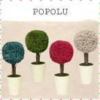 ドライフラワー ポポル POPOLU ポプリ プチ ポット 観葉植物 ミニチュア 雑貨 インテリア雑貨 かわいい モダン
