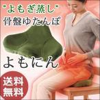 ショッピングゆたんぽ 湯たんぽ よもぎ蒸し プロイデア 椅子 骨盤ダイエット 骨盤クッション 温め 冷え対策 骨盤ゆたんぽ よもにん