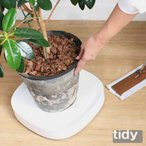 tidy プランタブル 植木鉢トレー 観葉植物 ティディ tidy テラモト グリーン 植物植物 キャスター付