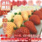 3色いちご詰合せ 奈良県産 古都華 パールホワイト 淡雪が入った 苺 セット  お歳暮  出荷予定:12月上旬〜 #元気いただきますプロジェクト(野菜・果物)
