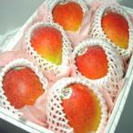 メキシコ産アップルマンゴー 6個入り (化粧箱入り)  出荷予定:4月上旬〜 父の日 ギフト