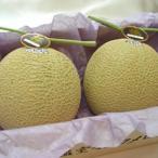 静岡県産 クラウン マスクメロン 大玉2個  木箱入り 国産メロンの最高級品  ガラス温室で栽培されたフルーツの王様 お歳暮 ギフト