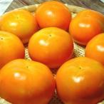 奈良県産 富有柿 8個入り    *北海道、沖縄への発送には送料別途540円が加算されます。