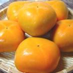 柿子 - 和歌山県産  平タネ柿 6個入り   *北海道、沖縄への発送には送料別途540円が加算されます