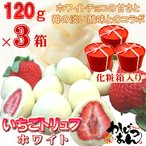 いちごトリュフ ホワイト 120g ×3箱 フリーズドライ苺をホワイトチョコレートでコーティングしたスイーツ  苺トリュフ ホワイトデー ギフト