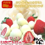 いちごトリュフ ホワイト 90g フリーズドライ苺をホワイトチョコレートのコーティングしたスイーツ 苺トリュフ ホワイトデー ギフト
